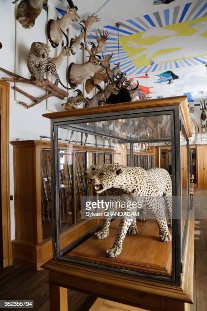 Musée de la Chasse et de la Nature, Paris. (Photo by Sylvain GRANDADAM/Gamma-Rapho via Getty Images)
